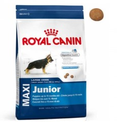 Royal Canin корм для собак Maxi Junior 15кг