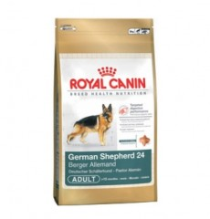 Royal Canin корм для собак German Shepherd 24 12кг