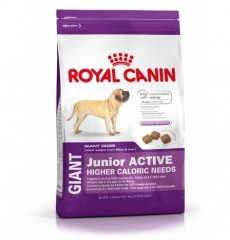 Royal Canin Giant Junior Activ 15кг