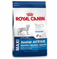Royal Canin Maxi Junior актив 15кг