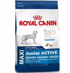 Royal Canin Maxi Junior актив 4кг